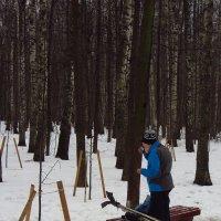 Опытный лыжник :: Андрей Лукьянов