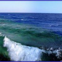 Синее Красное море :: Андрей Заломленков