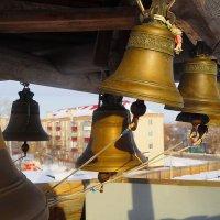 Зауральские звоны! :: A. SMIRNOV