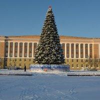 Великий Новгород новогодний :: Константин Жирнов