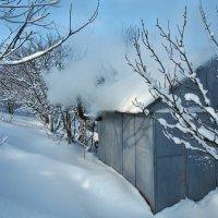 Экскурсия в Гадюкино зимой (25) :: Александр Резуненко