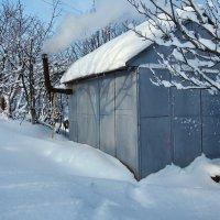 Экскурсия в Гадюкино зимой (26) :: Александр Резуненко