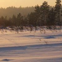 Зима! :: Андрей
