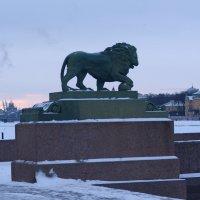 В этом городе львов больше, чем жителей!) :: Наталья Левина