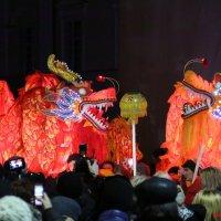 Празднование Китайского Нового года во Львове-4. :: Руслан Грицунь