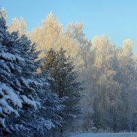 Зима на улице. :: nadyasilyuk Вознюк
