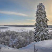 Морозный день :: Андрей Соболев