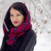 Зимняя красавица :: Юлия Горват