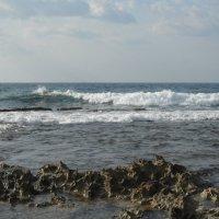 Песни Средиземного моря :: Надежда