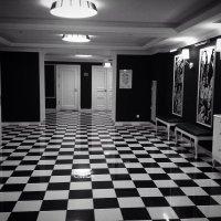 Черно-белый :: Лариса Корженевская
