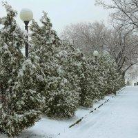 Зима в Таганроге :: Константин Бобинский