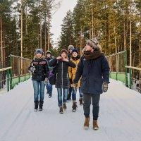 Прогулка в лесу :: Сергей Черепанов