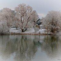 Зима :: Анна Браун
