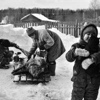 деревенское жизненное :: Елена Кузнецова