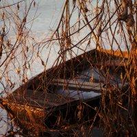 Старая лодка :: Оксана Лада