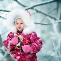 морозное утро. :: Сильвия Михеева