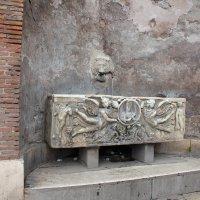 Римская поилка. :: vadimka