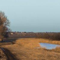Тёплый февраль :: Александр Анохов