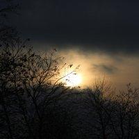Старооскольское солнце :: Валерия Лидерман