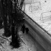 Гололёд :: Николай Филоненко
