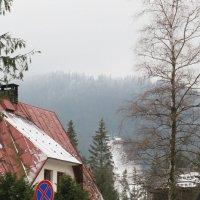 Закопане, зима. :: Павел Тюпа