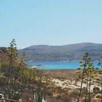 Дикий остров :: Виктория Титова