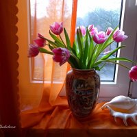 Тюльпаны на моём окне :: Nina Yudicheva