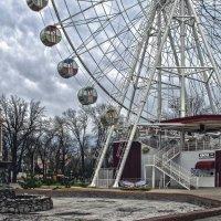 Зимний парк в южном городе :: Игорь Хижняк