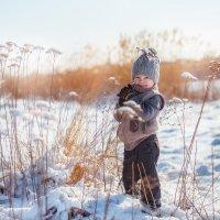 Мороз и солнце. :: Екатерина Савёлова
