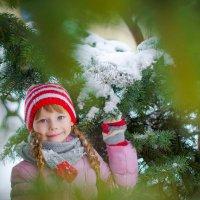 зима в Ростове :: Катерина Терновая