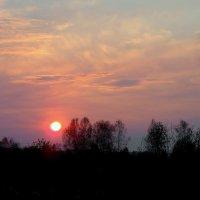 Краски заката. :: nadyasilyuk Вознюк