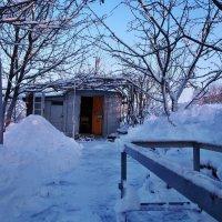 Экскурсия в Гадюкино зимой (35) :: Александр Резуненко