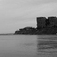 Чёрное здание,белые лебеди :: Елена Нор