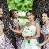 Подружки невесты :: Владимир Будков