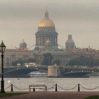 Пасмурно или дождливо. :: Владимир Гилясев