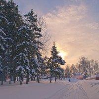 Зимнее утро в Раздольном. :: cfysx
