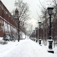 александровский сад :: Владимир Гулевич