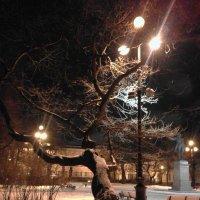 Февральский вечер... :: Марина Харченкова
