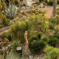 В саду, Оз :: Witalij Loewin