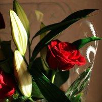 цветы :: Dasha Dasha