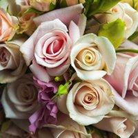 Розы для любимой :: Антонина
