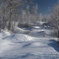 Хороший зимний денёк... :: Александр Попов