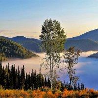 Ленивый туман :: Сергей Чиняев