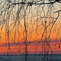 Персиком нежным закат догорает... :: Татьяна Губина