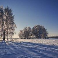 зимний полдень :: Александр Романов