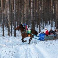 Зимнее развлечение :: Леонид Никитин