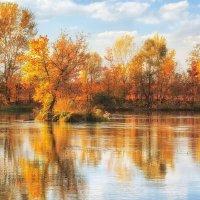 Легкий запах осени :: Cергей Дмитриев
