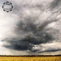 Дождь :: Анастасия Алексеева