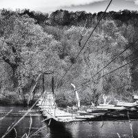 Мост :: Вадим Смирнов