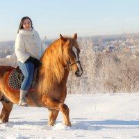 Солнце - рыжий конь :: Василий Гущин